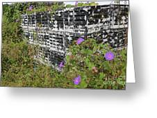 Morning Glories and Crab Traps Greeting Card by Theresa Willingham