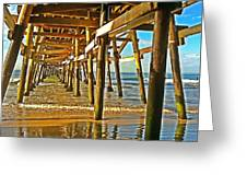 Morning Light During Low Tide Greeting Card by Traci Lehman