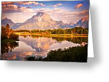 Morning Majesty Greeting Card by Marty Koch