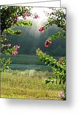 Morning Marsh Greeting Card by Carol Groenen