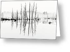 Morning Mystery Greeting Card by Louis Dallara