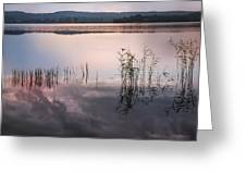 Morning Nocturne. Ladoga Lake. Northern Russia  Greeting Card by Jenny Rainbow