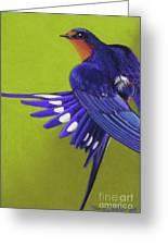 Morning Ritual Barn Swallow Greeting Card by Tracy L Teeter