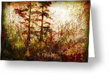 Morning Sunrise Burst Of Color Greeting Card by J Larry Walker