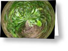 Morphed Art Globe 3 Greeting Card by Rhonda Barrett