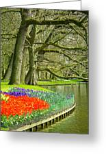 Moss Covered Trees And Spring Tulips In Keukenhof Gardens Near Lisse Netherlands Greeting Card by Robert Ford