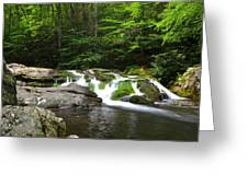 Mossy Falls Greeting Card by Frozen in Time Fine Art Photography