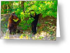 Mother Bear And Cub Greeting Card by Jeff  Swan