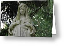 Mother Mary Greeting Card by Michael Sokalski