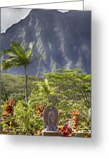 Mother Of Faith Greeting Card by Douglas Barnard