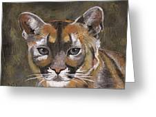 Mountain Cat Greeting Card by Jamie Frier