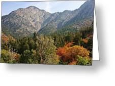 Mountain Escape Greeting Card by Bruce Bley