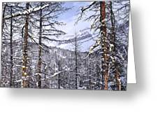 Mountain Landscape Greeting Card by Elena Elisseeva