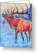 Mountain Lord Greeting Card by Jenn Cunningham