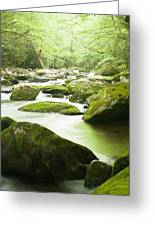 Mountain Stream In Spring Greeting Card by Phyllis Peterson