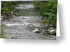 Mountain Stream Greeting Card by Linda Brown