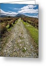 Mountain Track Greeting Card by Adrian Evans