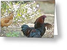 Mr. Rooster Struts Greeting Card by Artist and Photographer Laura Wrede