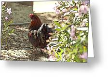 Mr. Rooster Takes A Stroll Greeting Card by Artist and Photographer Laura Wrede