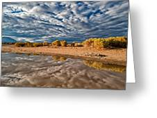 Mud Puddle Greeting Card by Cat Connor