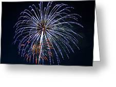4th Of July Fireworks 12 Greeting Card by Howard Tenke