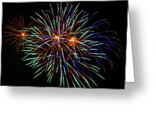 4th Of July Fireworks 22 Greeting Card by Howard Tenke