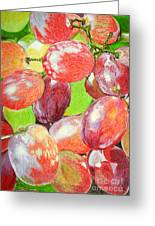 Multi Coloured Grapes Greeting Card by Yvonne Johnstone