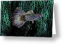 Multicolored Tropical Fish In Digital Art Greeting Card by Mario  Perez