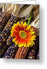 Mum And Indian Corn Greeting Card by Garry Gay