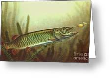 Muskie And Spinner Bait Greeting Card by Jon Q Wright
