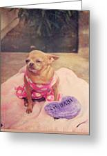 My Baby Greeting Card by Laurie Search