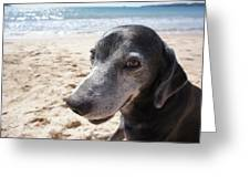 My Dog Greeting Card by Chikako Hashimoto Lichnowsky