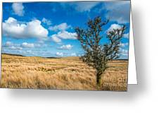 Mynydd Hiraethog Greeting Card by Adrian Evans