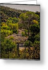 Mystic Wandering Greeting Card by Mark Myhaver