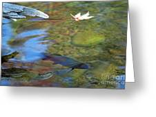 Mystic Waters Greeting Card by James Lady