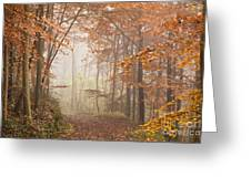 Mystic Woods Greeting Card by Anne Gilbert