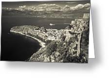 Nafplio Peninsula Sepia Greeting Card by David Waldo