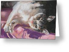 Nap Time For Kitty Greeting Card by Janice Harris