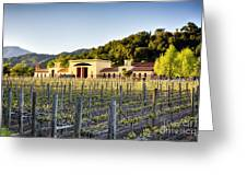 Napa Valley Spring Sunset Greeting Card by George Oze