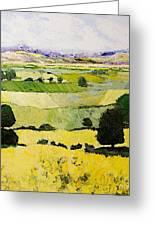 Napa Yellow2 Greeting Card by Allan P Friedlander