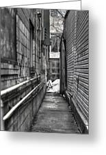 Narrow Alley Greeting Card by Nicky Jameson