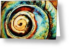 Native Spiral Greeting Card by Daniele Smith