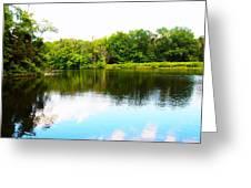 Natures Mirror Greeting Card by Deborah Fay