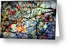 NATURES STAINED GLASS Greeting Card by KAREN WILES