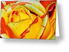 Nature's Vivid Colors Greeting Card by Kaye Menner