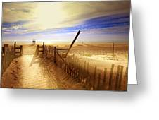 Nauset Beach Early Morning Greeting Card by Dapixara Art