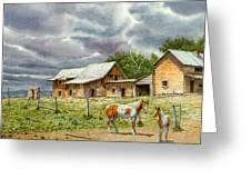 Near Taos Greeting Card by Paul Krapf
