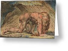 Nebuchadnezzar Greeting Card by William Blake