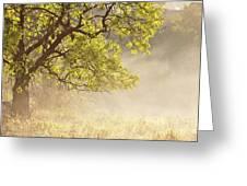 Nebulous Tree Greeting Card by Heiko Koehrer-Wagner