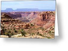 Needles Grand Canyon Greeting Card by Adam Jewell